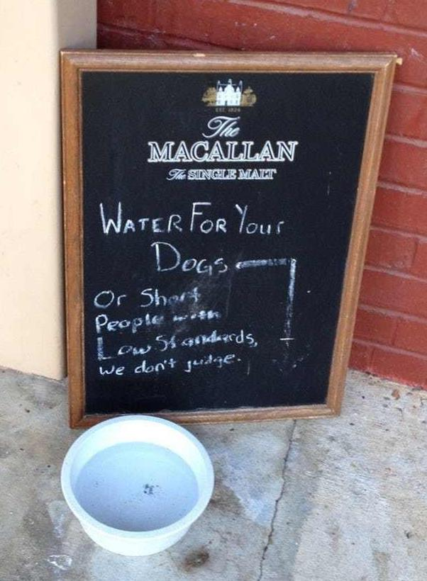 water your dog - chalkboard signs pic