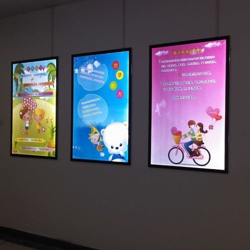 Display Board Poster Case