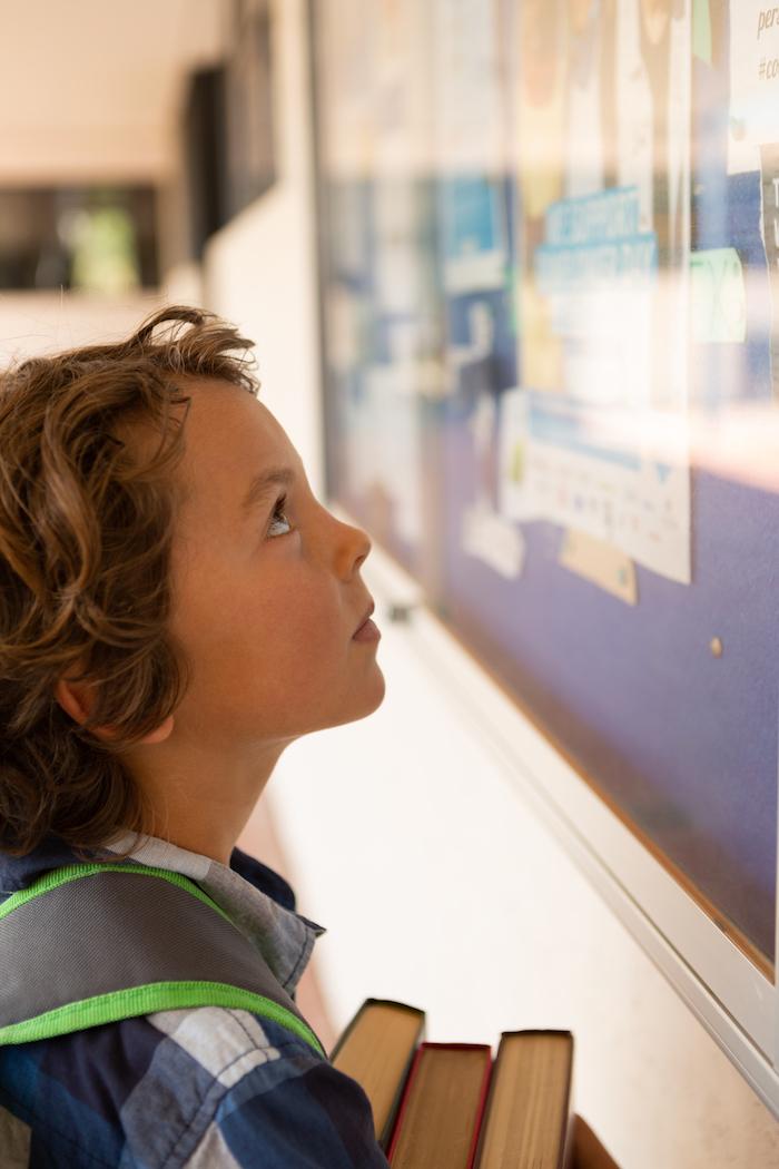 School Boy Looking at School Notice Board