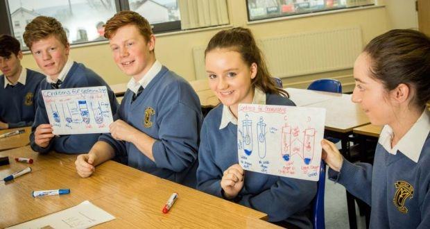 School Classroom Handheld Whiteboards
